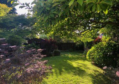 The Garden Designer's Foliage Garden