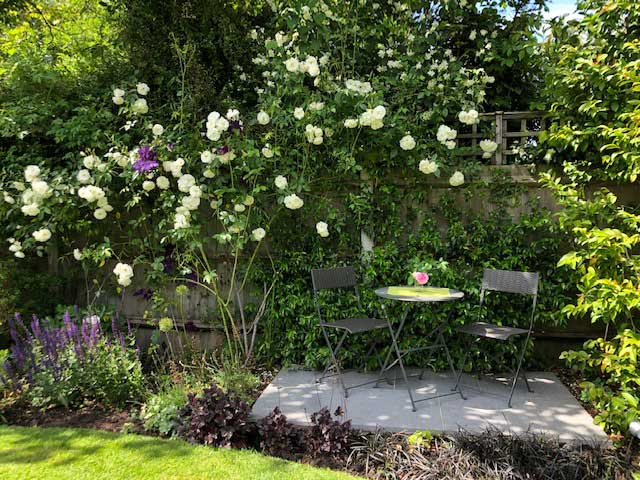 The Reflective Garden