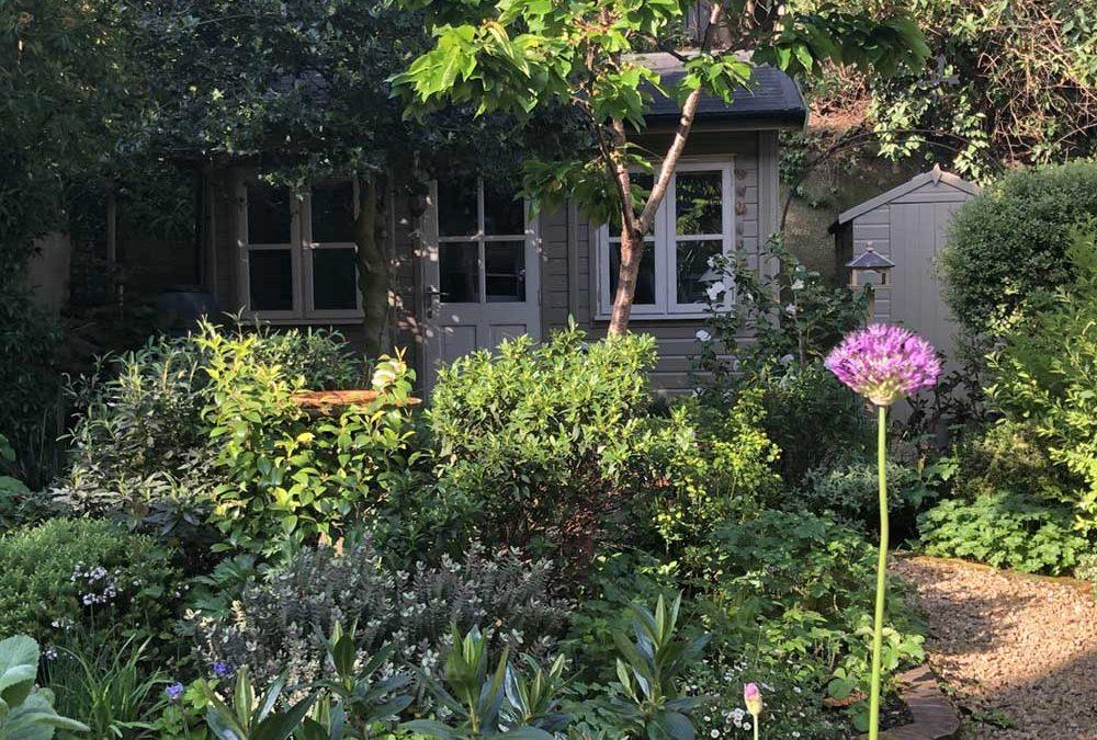 Richly planted patio garden