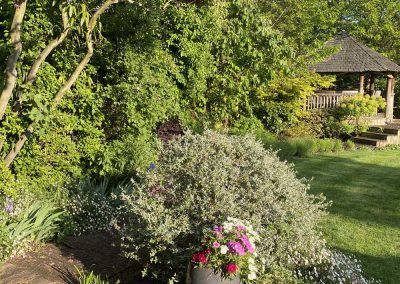 The South African Garden